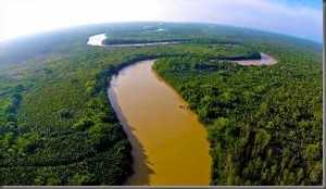 puerto princesa palawan river