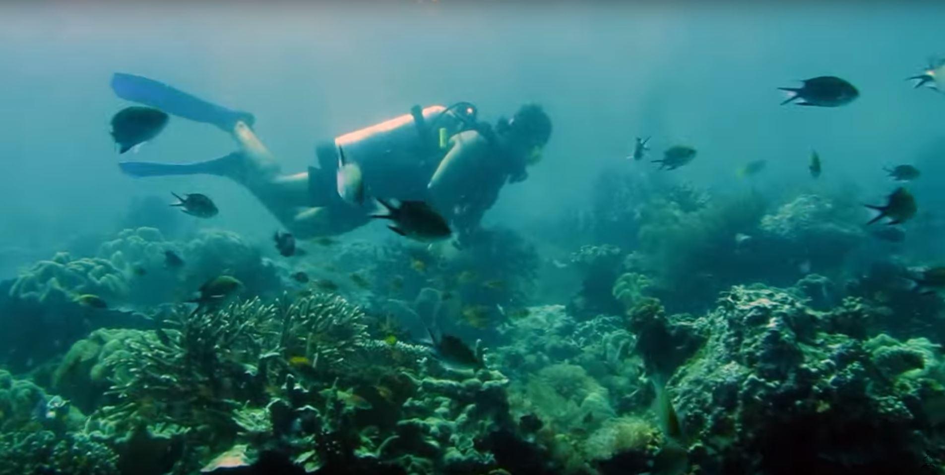 raja ampat scuba diving indonesia sailing