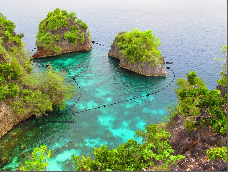 scuba diving the coral triangle raja ampat indonesia