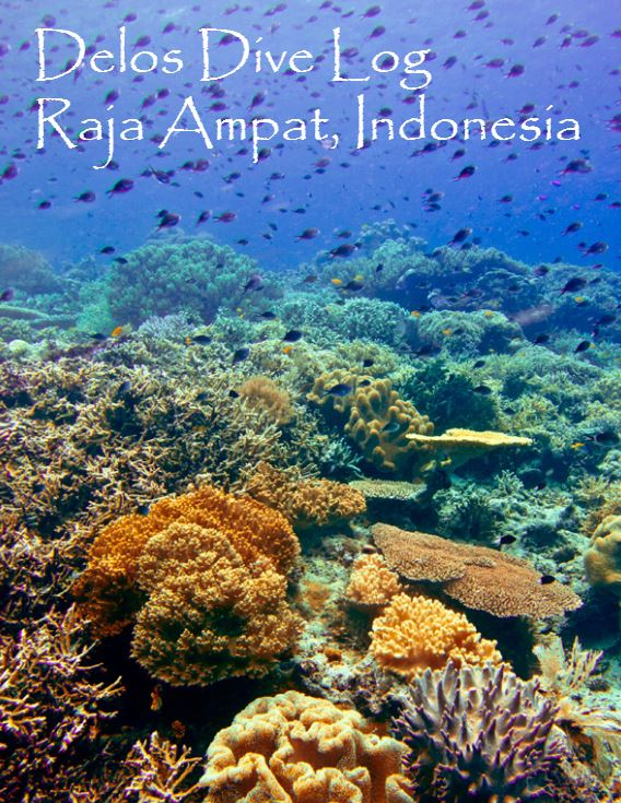 raja ampat dive sites log delos