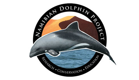 namibian dolphin project