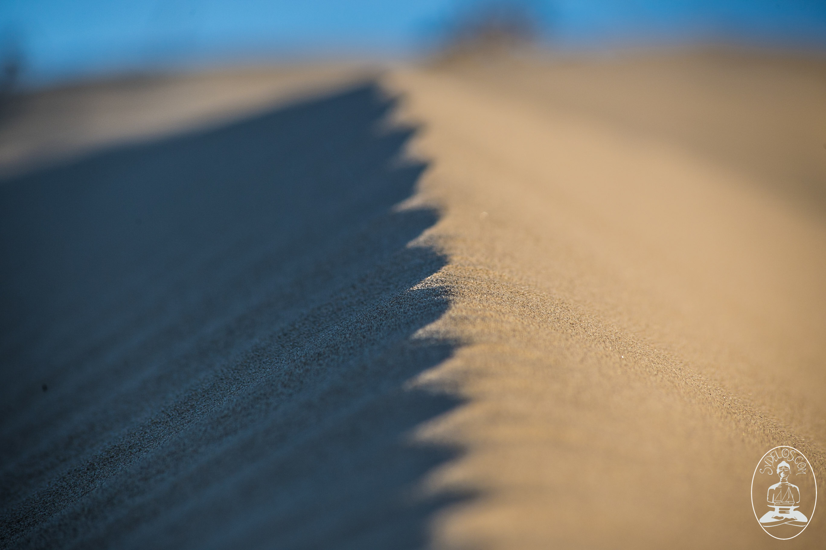 sand dune macro close up desktop background